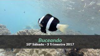 10º Sábado (3ºTrim2017)– Buceando