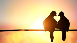 ¿El amor en una relación es para toda la vida?
