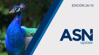 Reconocer el Creador | ASN Update