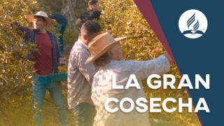 La gran cosecha – El sueño de Dios para su iglesia