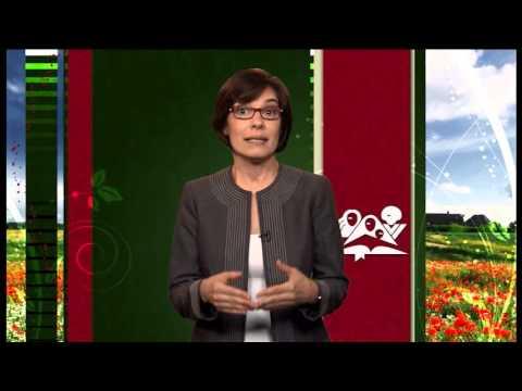 Introducao – Curso de Liderança para Mulheres nível IV