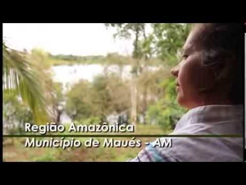 13/Set – Provai e Vede: Hortênsia Couve-flor