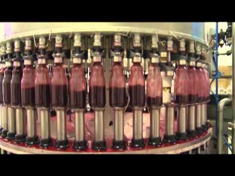 Série Fabricando Saúde: Produção do Suco de Uva – Superbom