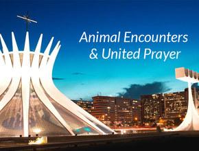 Animal Encounters & United Prayer – SAC/GAiN 2014