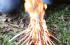 Mundo do Desbravador – aula sobre fogueira #1
