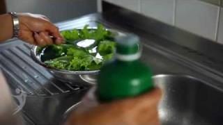 Higienizando os vegetais  – Saúde com Esperança
