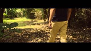 Trailer: A verdade – Estudos Bíblicos
