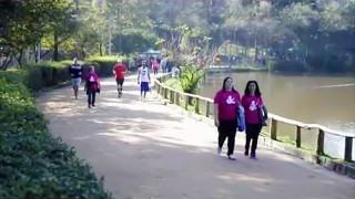 Caminhada da Mulher Saudável – Revista NT
