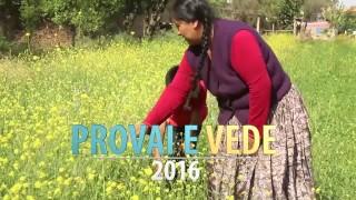 Trailer – Provai e Vede 2016