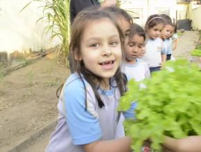 Horta na Escola – Revista NT