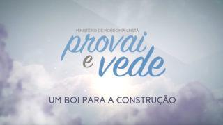 01/Abr – Um boi para a construção | Provai e Vede 2017