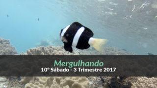 10º Sábado (3ºTrim17) – Mergulhando