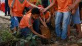 Crianças da ADRA participam da Semana da Árvore