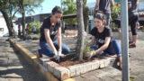 Jovens revitalizam praça em Novo Hamburgo | Revista NT