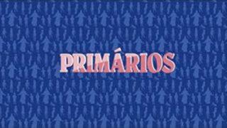 Primários – 2º Trimestre de 2020 – APO