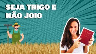 A história do trigo e do joio | Contando a Bíblia Kids