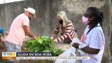 TV GAZETA (Globo) | Idosos cultivam horta solidária na Grande Vitória